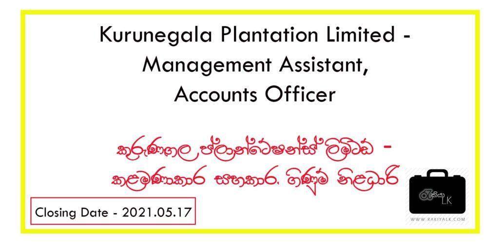 kurunegala plantation limited vacancies